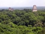 Lebensgeister und Brüllaffen. Abenteuerlicher Ausflug in den Zaubergarten der Maya