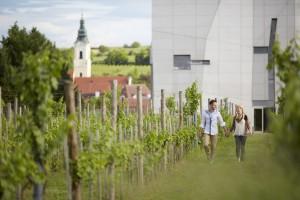 Weingartenatmosphäre