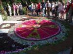 Ein Blumenmeer symbolisiert Zusammenhalt: Schwaben und Ungarn in Budörs inUngarn