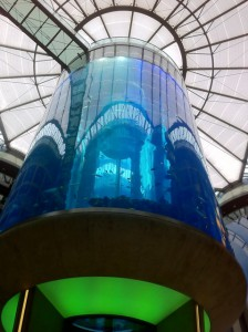 Aquarium im Foyer des Tagungshotels
