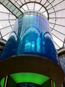 Aquarium im Foyer des Tagungshotels