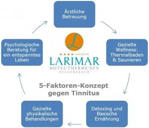 larimar-5_faktoren_konzept-tinnitus_larimar_0